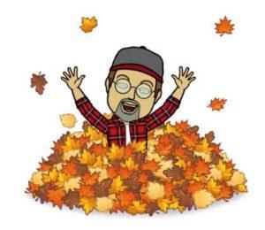 Sisbro Bob Playing in Leaves